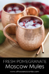 Pinterest - Pomegranate Moscow Mules